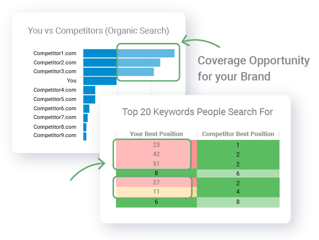 Search Marketing Consumer Insights