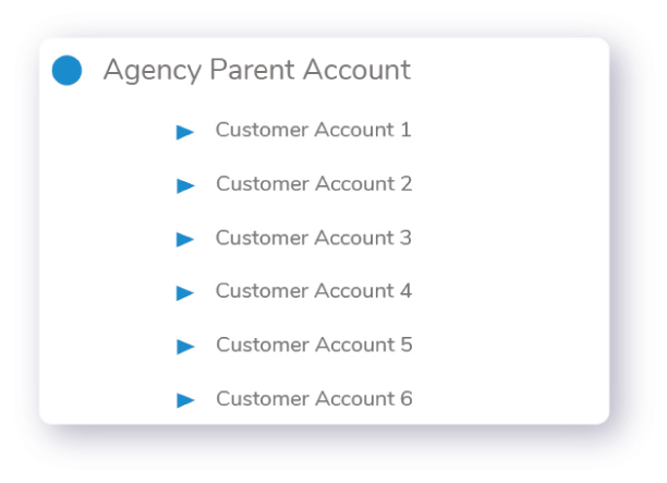 Agency Subscription Account Structure